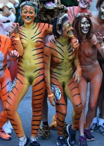 streak_for_tigers_various_years_006