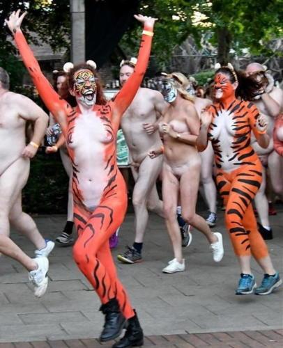 streak_for_tigers_various_years_007