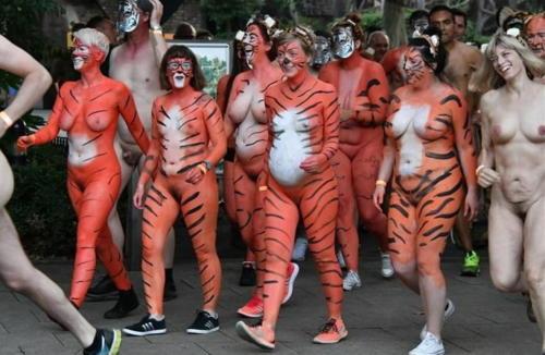 streak_for_tigers_various_years_010